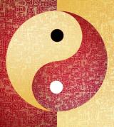 yin-yang-300x336